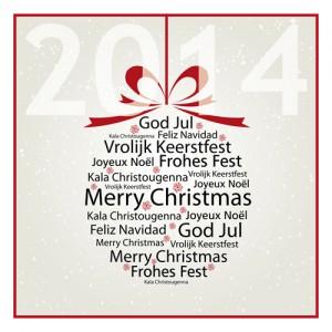 Wir wünschen Ihnen ein frohes Fest und einen guten Rutsch!